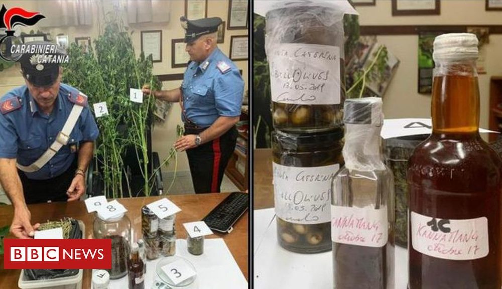 CBD Oil Italian chef arrested over cannabis 'was testing new flavours'