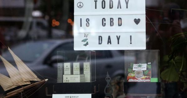 CBD Oil CBD Oil: Meet Some Of The Top Brands
