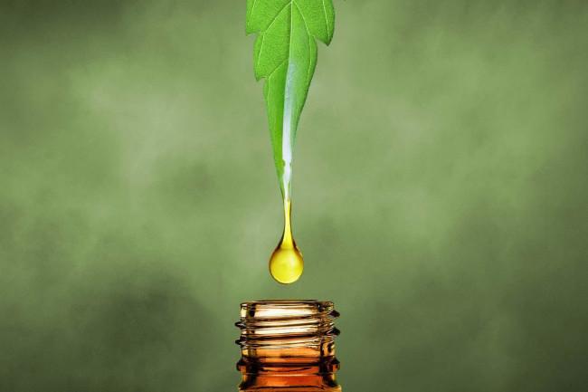 CBD Oil CBD Oil UK: Discover the 8 best CBD oils in the UK (2020)