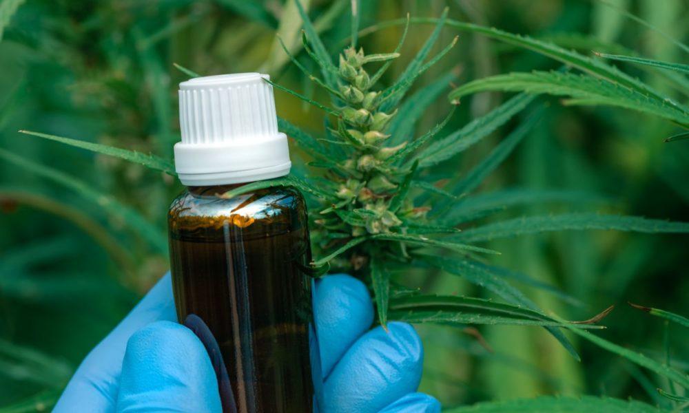 CBD Oil Can CBD Oil Help Ease Your Pain?