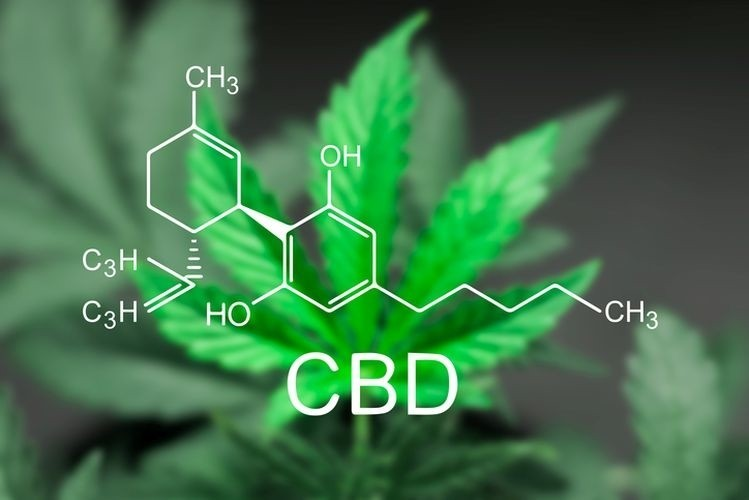 CBD Oil CBD Oil for Hair Loss and Growth: A Complete Guide