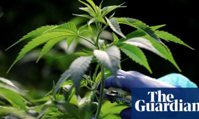 CBD Oil UK cannabis firm bought by US-based fund in multi-million pound deal