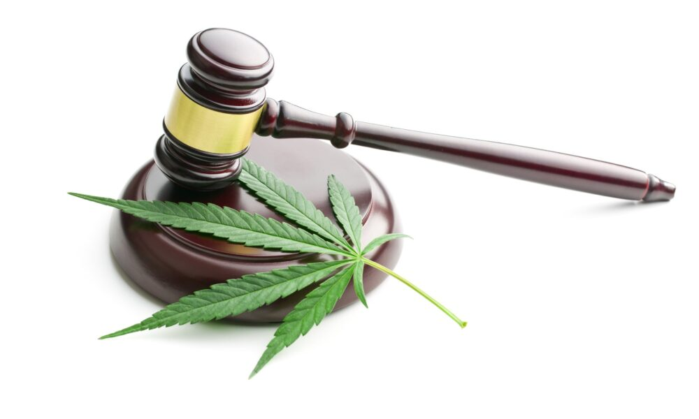 CBD Oil Why Marijuana Stocks HEXO and Organigram Holdings Got Trounced on Friday