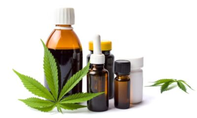 CBD Oil Does CBD Oil Get You High?