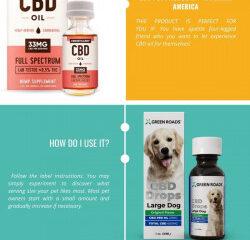 CBD Oil CBD Pet Products – naturalsamerica
